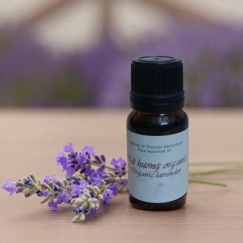 Tinh dau oai huong (lavender) vien nong nghiep